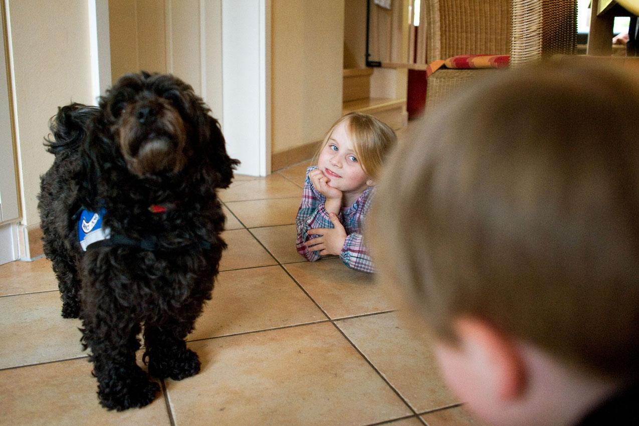Das Leben mit einem Diabethikerwarnhund. Luisa hat Diabetes. Um mit der Krankheit besser leben zu können bekam sie von ihren Eltern einen Diabethikerwarnhund. Der Hund erkennt schon am Atemgeruch wenn der Blutzuckerspiegel sinkt. Ohne ihn müsste alle 10 Minuten gemessen werden. Luisa liegt mit dem Bruder und ihrem Hund, Bolle, auf dem Küchenboden.