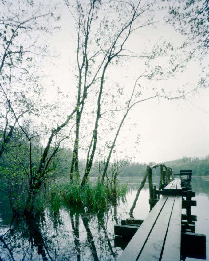 Das Bildmotiv zeigt einen Holzsteg am Pingsdorfer See im Zeitraum von 20h15 bis 21h45 am spaten Abend des 07. Mai 2010. Der See liegt im Naturschutzgebiet Villeseen in Bruhl am Wasserturmweg und Maiglerstra?e. Das Naturschutzgebiet Villenseen gehort zum Naturpark Rheinland und ist ein Naherholungsgebiet zwischen Koln und Bonn. Landschaft und Natur lasst sich im Naturpark Rheinland vielseitig erleben. Dort, wo noch bis vor kurzer Zeit Braunkohle abgebaut wurde, ist wieder eine okologisch wertvolle Landschaft entstanden. Heute konnen im Naturpark wieder seltene Tier- und Pflanzenarten beobachtet werden. Nach Beendigung des Braunkohlenabbaus entstand der Pingsdorfer See 1954 durch den langsamen Anstieg des Grundwassers. Der Pingsdorfer See mit 3,8 ha gro?en Flache steht unter Landschaftsschutz.Hier sind ganzjahrig geschutzte Laichzonen eingerichtet, die nicht betreten oder befischt werden durfen. Der See wird bewirtschaftet von einem ortsansassigen Angelverein. Um Abstand vom Arbeitsalltag, dem hohen Lebenstempo in einer Gro?stadt und dem oft ungesunden Umfeld durch Larm und schlechter Luft zu bekommen, geniesse ich schlicht und einfach in mitten der Natur die Stille. Durch die Entschleundigung des eigenen Lebens an dem ein oder anderen Tag komme ich zur Ruhe, durch die Entspannung breitet sich ein Gefuhl von Freiheit in mir aus. Durch das Festhalten und Darstellen von eben diesen einfachen Orten der Stille mochte ich simple jedoch lebenswichtige Inhalte uber intuitiv verstandliche Bildmotive transportieren. Wie in der vorliegenden Bildmotivreihe (Pingsdorfer See 01, 02 und 03) verbringe ich aus diesem Grund auch gerne einen gesamten Tag vor Ort; - mit dem Beginn der ersten Aufnahme noch vor dem Sonnenaufgang und der letzten Belichtung des Tages bis nach dem Sonnenuntergang. Die Unterschiede liegen sehr oft lediglich im Detail. Allerdings gibt es auch Tage, da verandern sich Orte und demnach auch die Bildmotivsequenzen grundlegend, scheinen nicht mehr zusammenzupassen,