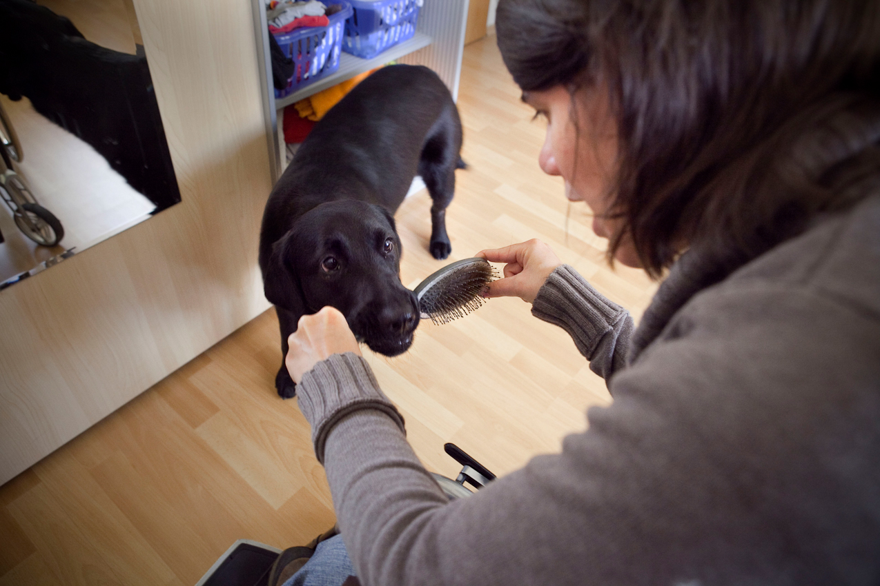 Luna ist ein ausgebildeter Behindertenbegleithund und kann auf Kommando sogar kleine Gegenstände wie z.B. Geldstücke oder Papier vom Boden aufheben. Sie ermöglicht ihrer jungen Besitzerin, den Alltag ganz souverän und selbstbewusst, zum großen Teil auch ohne menschliche Hilfe zu meistern.