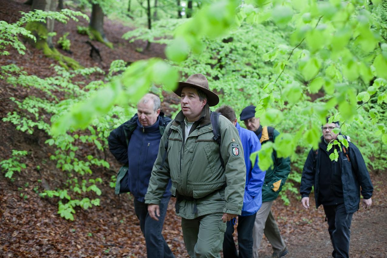 Meditation: Seit einigen Jahren dominiert das frische Grün der Buchen wieder die Farben des Waldes. Im Bild (v.l.): Peter Frischmuth, Ranger Roland Wollgarten, Uwe Hoffmeister, Jo Becker, Klaus Fröhlich.
