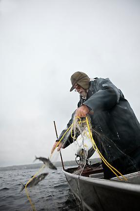 Fischerei 6